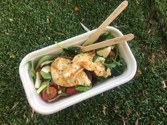 Grilled Lemon Pepper Chicken with Cherry Tomato Garden Salad