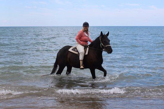 Nana's Horse Riding : Kalamaki beach Lady Diana