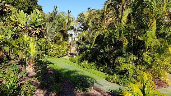 Hotel Jardin Tecina: Mini Golf