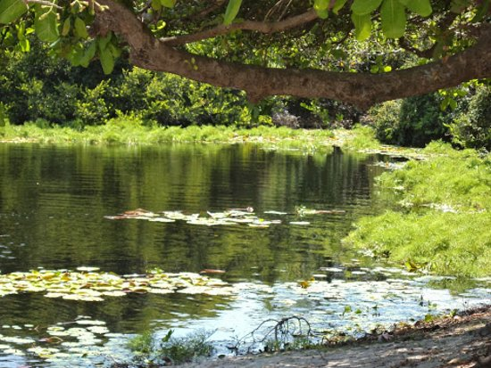 Lagoa da Princesa