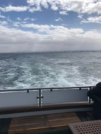Whale Watching in Luxury from Reykjavik: Out at sea with Reykjavik in the background