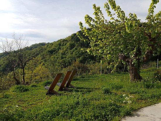 Province of Pesaro and Urbino, Italien: Die Aussicht auf den Conero von Ancona genießen