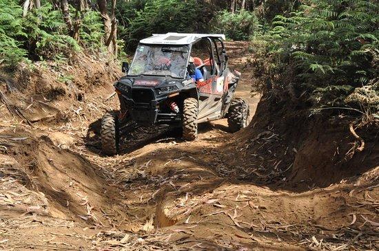 Cocorico Extrem Road: Cocoricó extrem road funchal En pleine action en hors piste