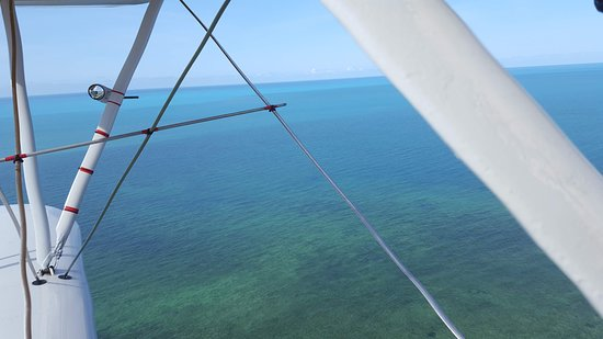 View from the biplane