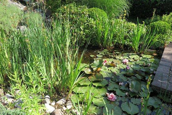 Die Garten Tulln Rosengarten C Alexander Haiden Bild Von Die Garten Tulln Tripadvisor