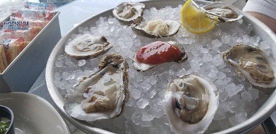 Amazing lunch! Alaskan halibut, lotta lotta garlic chicken, fried mushrooms and oysters.