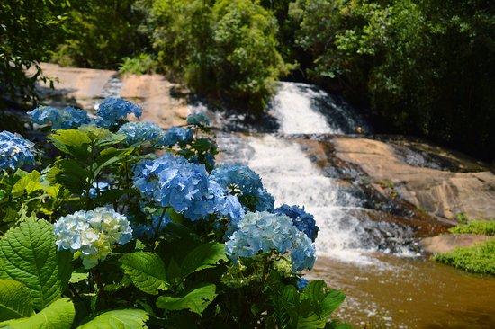 Canto das Cachoeiras