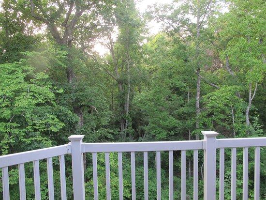 View off upper level porch