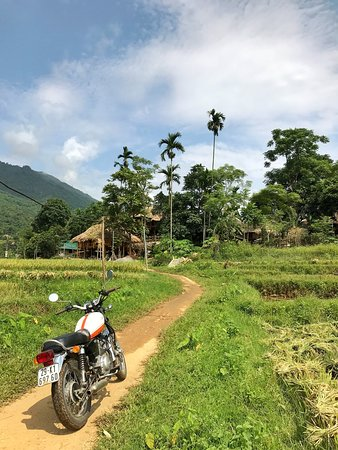 Pu Long Nature Reserve, Vietnam: [ Pu Luong Nature Reserve - An ideal destination for eco-tourists ] It is a naturally beautiful destination, off-beaten-path place with many exciting activities to relax and to be close to nature! Let's expose yourselves to this nature and keep your stressful work away! >>> wwww.vietlongtravel.com Photo by: Hai Yen Chu