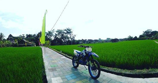 Santai Tours Dirt Bike Bali 사진