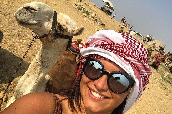 giza pyramids , camel ride quad bike and night light show all inclusive: giza pyramids camel quad bike night light show all inclusive