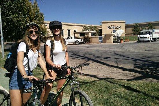 Wine Bike (Uco Valley - intera
