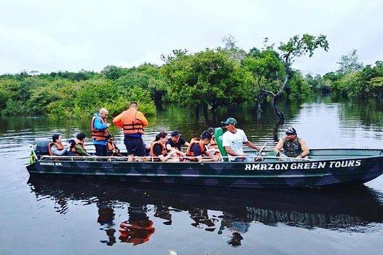 Macuxiツアー - ジャングルツアー - Amazon Rain For…