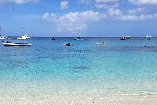 Folkestone Coral Reef Clear Kayak Tour