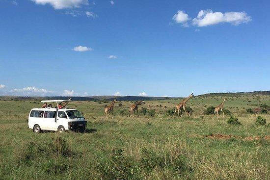Besh African Adventures