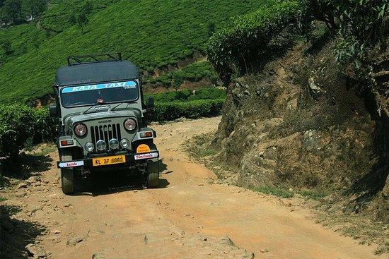 Munnar Jeep Safari