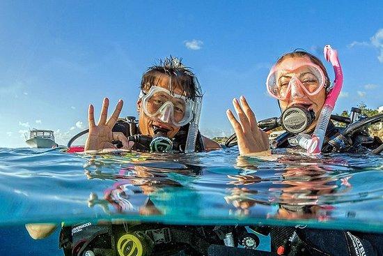 スキューバダイビング体験を発見