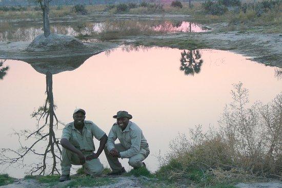Bateleur Safari Botswana