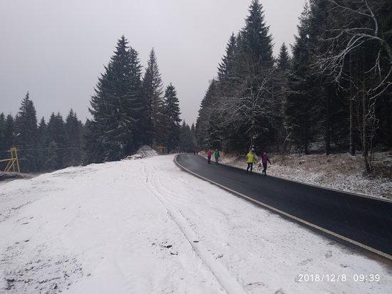Pernink, Tsjechië: Silnice v Krušných horách