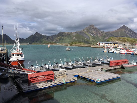 Bilde fra Engeløya