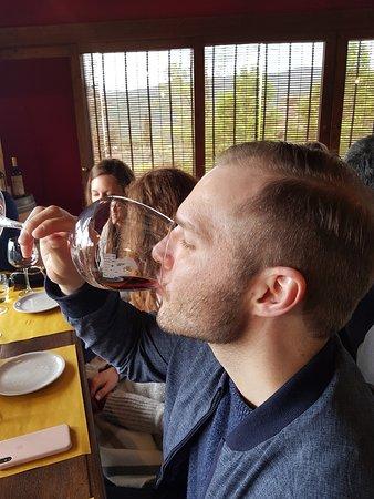 tasting  SENAIA red wine