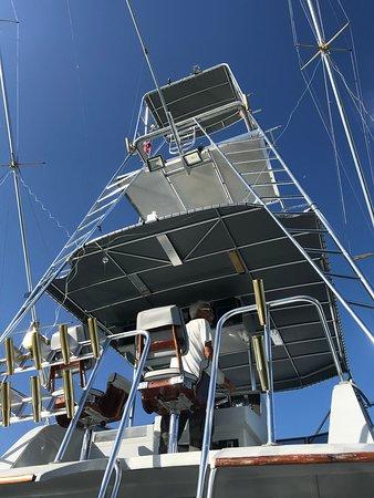 Poverty Sucks Fishing: Captain Dittmar hunting the open sea.