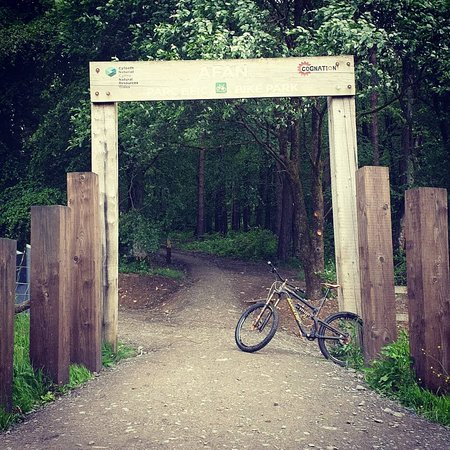 Afan Forest Park Mtb Trails