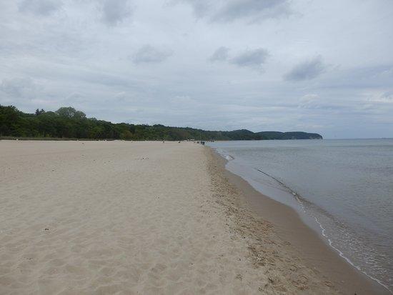Sopot Beach: La playa y el bosque