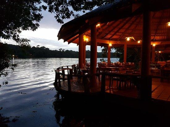 Pura vida en el Laguna Lodge en Tortugero. #CostaRica