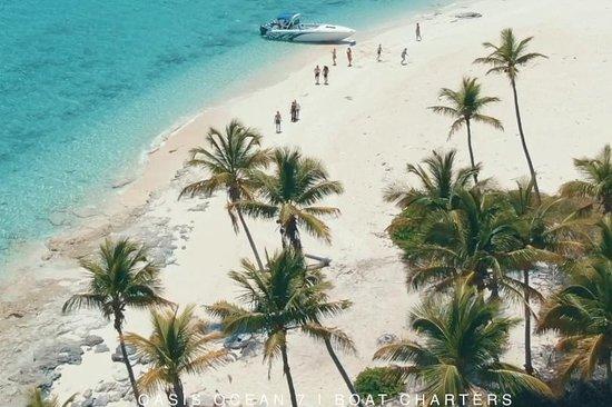 Oasis Ocean 7 Charters