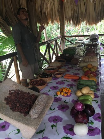 The Native Choice Tours : Our lunch spread