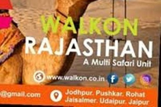 waljon safari