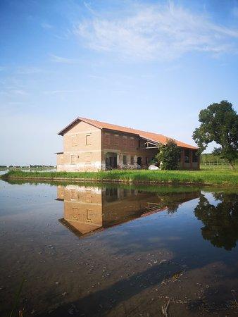 Azienda Agricola La Fagiana