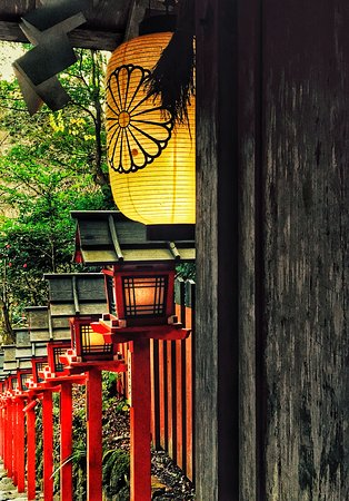 Kyoto beauty.