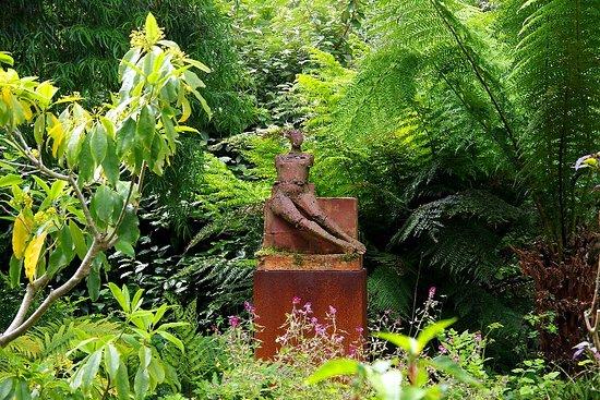 Falcarragh, Ierland: Herrlicher Garten