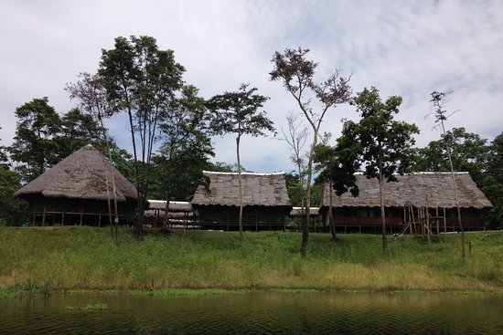 Amazon Dreams Eco - Tours