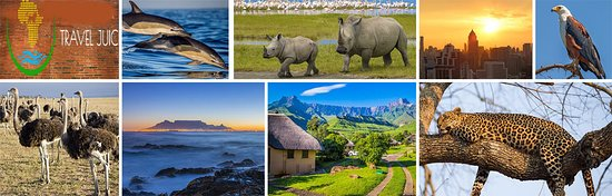 For anyone who is nature lovers or, wildlife lovers can spend a great amount of time and enjoying diverse wildlife and traditional beauty during South Africa Safari trip. If you are looking for reasonable tour package options, you have come to the right place. At Travel Juice, we offer our package with the luxury accommodation services. Surely, you will get mesmerizing experiences with our package. If you have any query, get in touch with the polite customer support team which is available 24/7.