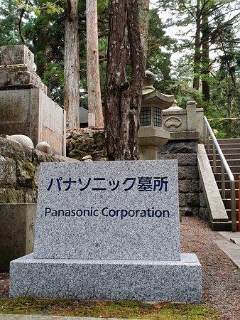 А вот тут Панасоник похоронен...рано они его...)))