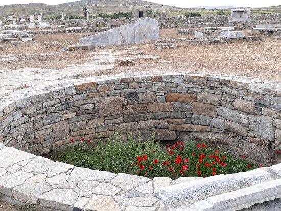 Near temple of Apollo on Delos