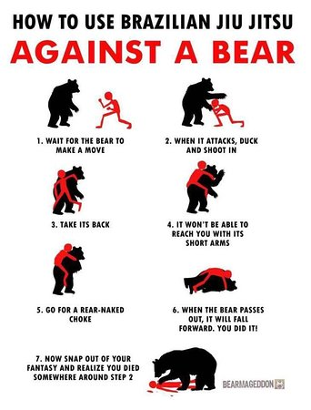 Anchorage, AK: Bear defense