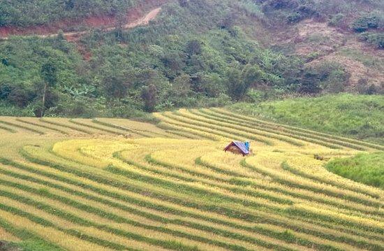 Phu Xai Lai Leng
