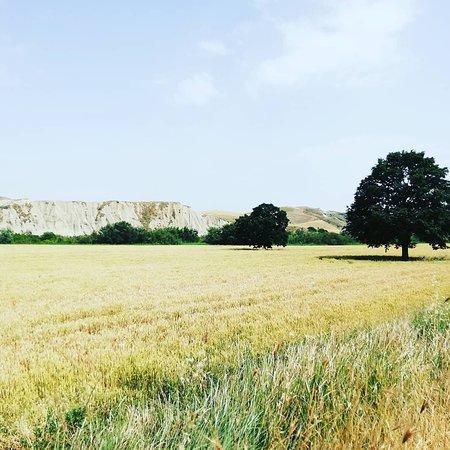 Cavonica, fondo valle presso la Basentana, San Mauro Forte (MT), Basilicata.