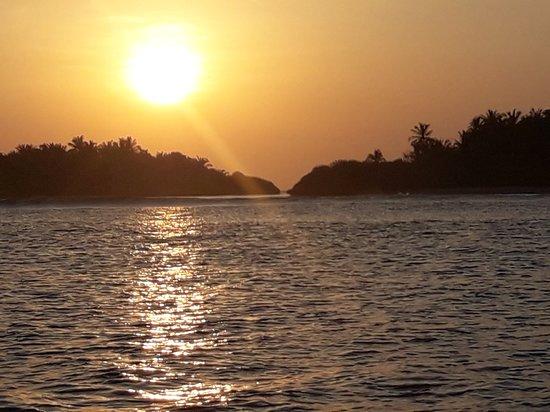 Muli: Sunset 