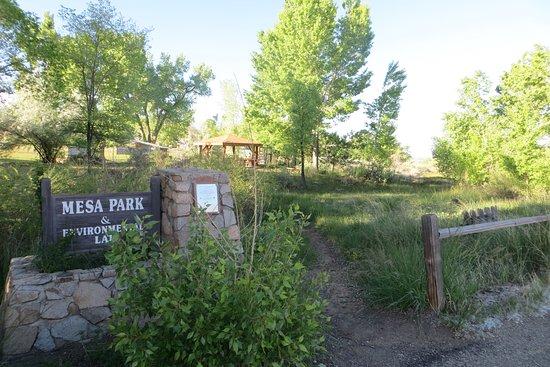 Mesa Park and Environmental Lab