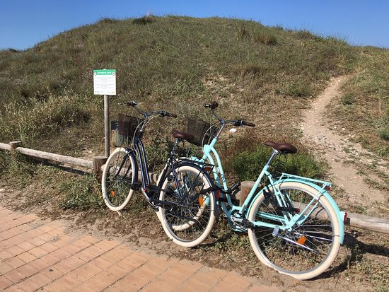 Happy Tourist Center: Bike trip to El Saler :)