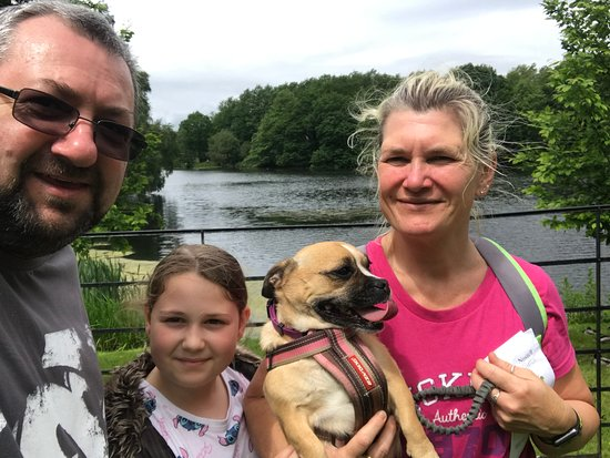 Nostell Priory and Parkland: NP4