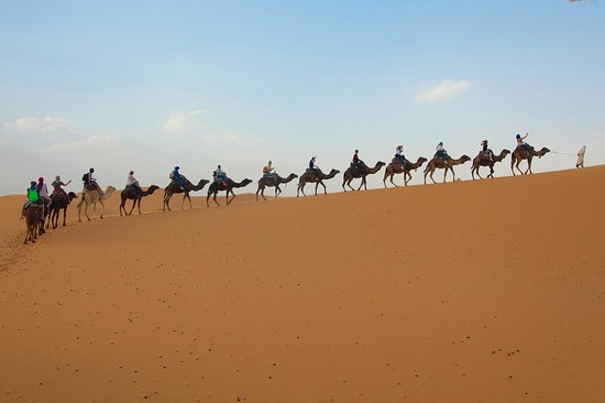SunShine Morocco Tours