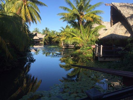 Landscape - Maitai Lapita Village Huahine Photo