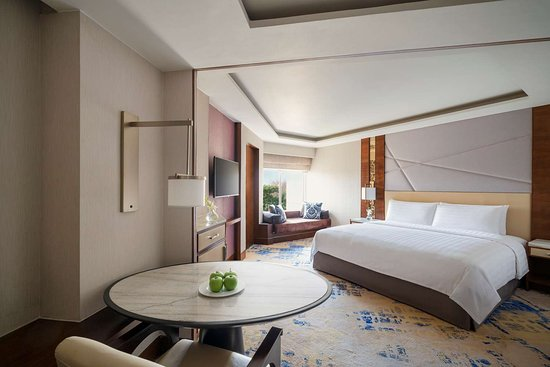 Shangri-La's - Eros Hotel, New Delhi: Disabled King