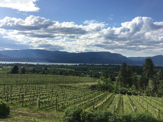 Nanaimo, Canadá: Winery